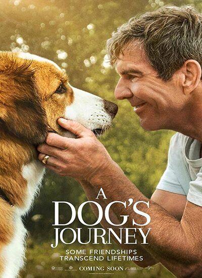 دانلود فیلم سفر یک سگ A Dog's Journey 2019