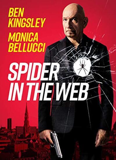 دانلود فیلم عنکبوت در تار دوبله فارسی Spider in the Web 2019